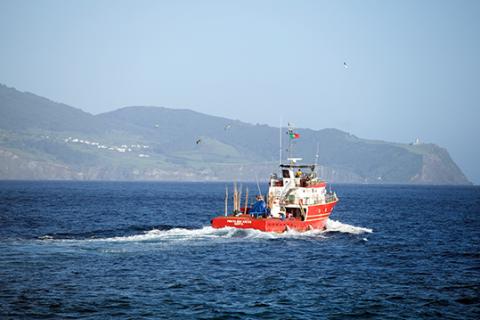 Mar dos Açores atum bom petisco